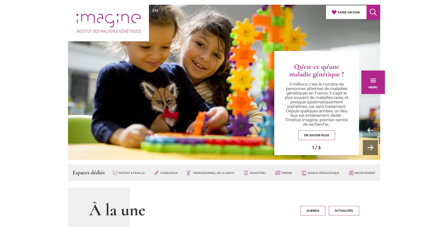 Image du site Institut Imagine